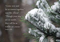 Christian art - Isaiah 1 verse 18  - Snow on Pine Photo - Bible art, religious decor, Scripture wall art, Christian gift, Christian photo