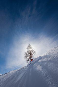 Perfect days on the slopes - Skier: Thayne Rich - Photo: Will Wissman - Skiing Magazine