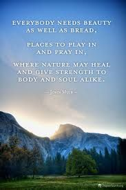 Image result for nature quotes john muir