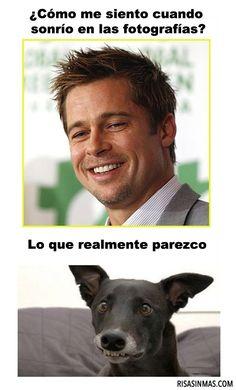 Mi sonrisa en las fotografías, la cara del perro!!! Jajajaaaa.