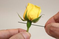 How to Make a Boutonniere for a Wedding or a Prom | eHow