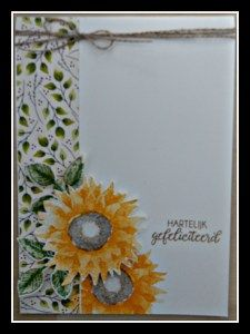 Painted harvest Stampin Up – Hilde Suykerbuyk # misssugarbelly