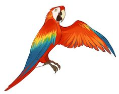 Best Ideas For Bird Design Cartoon Dark Art Drawings, Bird Drawings, Cartoon Drawings, Animal Drawings, Pencil Drawings, Parrot Drawing, Bird Design, Animal Design, Sketch Inspiration
