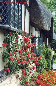 Anne Hathaway's Cottage garden, near Stratford-upon-Avon