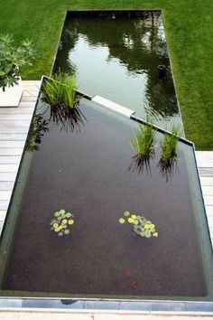 garten teich -Modern pond, designer pond A pond in your own garden creates a very special atmosphere. Pool Water Features, Outdoor Water Features, Water Features In The Garden, Modern Water Feature, Landscaping Supplies, Modern Landscaping, Backyard Landscaping, Landscaping Software, Natural Swimming Ponds
