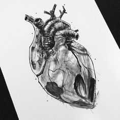 ⚫️ #sketch #illustration #winsorandnewton #worldofartists #sketchdaily #imaginationarts #artofvisuals #arts_help #artsanity #aov #chile #corazon #heart #wop #worldofpencils