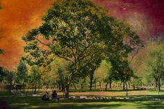 Parque by Alexis Puertas on 500px