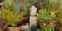 diggardensnursery… - All For Garden Dig Gardens, Garden Workshops, Yard Art, Rock Art, Houseplants, Buddha, Planter Pots, Succulents, Home And Garden