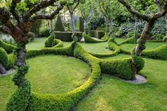 easy and cool looking boxwood