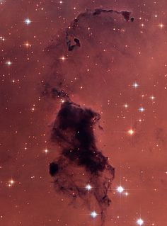 Bok Globules, opaque, dark knots of gas/ dust which are absorbing light in the center of the nearby emission nebula & star-forming region, NGC 281. They are named after astronomer Bart Bok, who proposed their existence in the 1940s