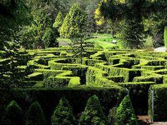 VanDusen Elizabethan Hedge Maze planted with pyramidal cedars VanDusen Botanical Garden Vancouver, BC Canada Photo credit: Peggy Heath Amazing Gardens, Beautiful Gardens, Famous Gardens, Landscape Design, Garden Design, Amazing Maze, Topiary Garden, Topiaries, Formal Gardens