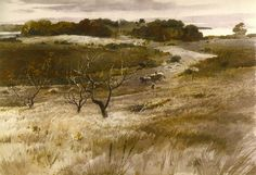 Fields of Broad Cove 1941 watercolor on arches paper 29 1/4 x 41 5/8 in. Portland Museum of Art, Maine, USA