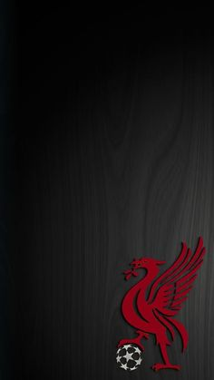 Ideas Sport Wallpaper Volleyball For 2019 Lfc Wallpaper, Liverpool Fc Wallpaper, Liverpool Wallpapers, Wallpaper Space, Liverpool Logo, Liverpool Soccer, Liverpool Football Club, Juergen Klopp, This Is Anfield