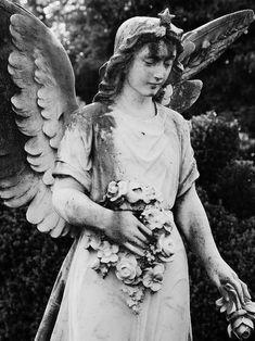 German Angel - note the star
