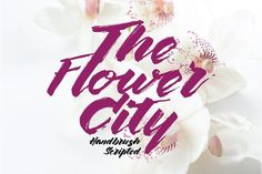 The Flower City by wubstudio on @creativemarket /Volumes/Marketing/_MOM/Design Freebies/Creative Market Freebies/The-Flower-City