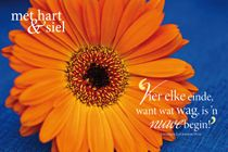 Something Afrikaans! Praise The Lords, Printable Quotes, Afrikaans, Christian Quotes, Psalms, Meet, Words, Printables, Daisy