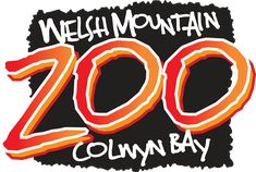 A great family day out in North Wales. Come and say hello to our animals at the National Welsh Zoo. Fun Days Out, Family Days Out, Wales Snowdonia, Zoo Map, Humboldt Penguin, Hawaiian Girls, Wild Photography, Zoo Keeper, Animal Species