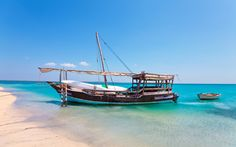 Africa's tropical paradise in the translucent waters of the Indian Ocean 🌴🌴🌴 Just off Mozambique, the Quirimbas Archipelago offers pristine beaches, tall coconut palms & a fascinating history. Who do you want to holiday with? African Hut, Ranger, Safari, Hai, Beach Trip, City Beach, Beach Travel, Underwater World, Sandy Beaches