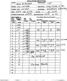 Family Beginnings - Worksheet - Stimulation Protocols