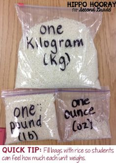 Fill Ziplock bags with a small object, like rice or macaroni noodles, so students can feel how much each unit weighs.
