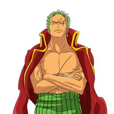 Roronoa zoro with scar in one piece