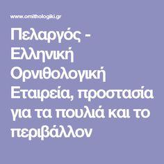 Πελαργός - Ελληνική Ορνιθολογική Εταιρεία, προστασία για τα πουλιά και το περιβάλλον