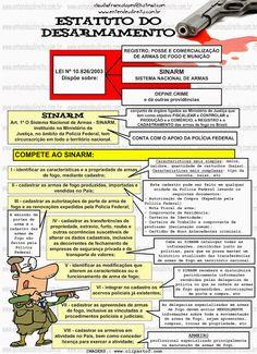 Estatuto Do Desarmamento - Lei 10.826/2003