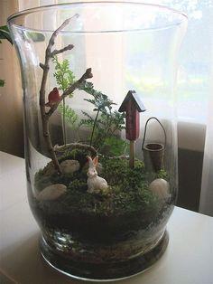 mini garden mini glass garden by janeizzy, - garden Rabbit Foot Fern, Most Beautiful Gardens, Succulent Terrarium, Terrarium Ideas, Orchid Terrarium, Miniature Kitchen, Miniature Fairy Gardens, Glass Garden, Small Gardens