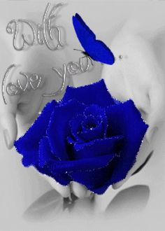 Blue Roses Wallpaper, Butterfly Wallpaper, Butterfly Gif, Rose Images, Flower Images, Heart Images, Flowers Gif, Love Flowers, Beautiful Gif