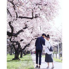 【_kaiyi】さんのInstagramをピンしています。 《🌸桜の季節 #utravelhk #canon #80d #film #hkig #hk couple #IGersJP #newzealand #instagood #vscogrid #vsco#vscocam #pbhk #today #landscape #NZMustDo #allshots_ #milkfoto #travel #lifeofadventure #mobilemag #captchina #team_jp_ #フィルム #フィルム写真 #桜 #春》