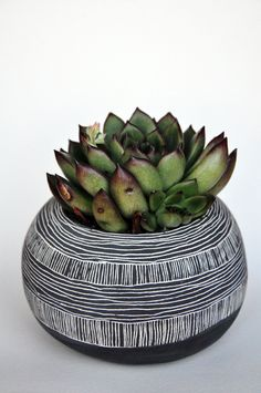 <3  Small Round Line as Pattern Planter. $30.00, via Etsy.