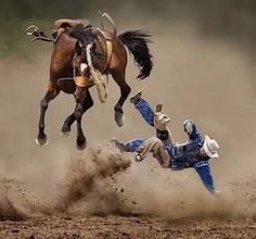 Rodeo Cowboys, Real Cowboys, Cowboy Horse, Cowboy And Cowgirl, Cowboy Pics, Cowboy Quotes, Man On Horse, Western Riding, Western Art