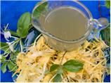 Honeysuckle sore throat syrup:* I would use this only for adults! Interesting edible flower remedy.