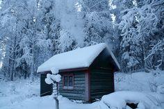 sauna w lesie