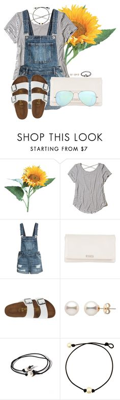"""Set #3 By My Little Brother!"" by annaewakefield ❤ liked on Polyvore featuring Hollister Co., Kate Spade, Birkenstock, Joie and Ray-Ban"