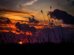 sunset feel - sunset