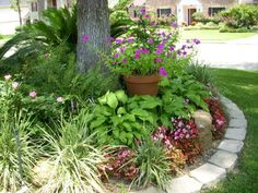 Cast iron plants caladiums and liriope around the base for Round flower bed ideas
