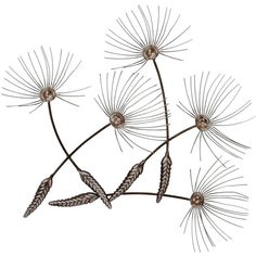 Contemporary Metal Wall Art - Dandelion Seeds: Amazon.co.uk: Kitchen &... (135 DKK) ❤ liked on Polyvore featuring home, home decor, wall art, filler, flower filler, flowers, backgrounds, effect, contemporary home accessories and flower home decor