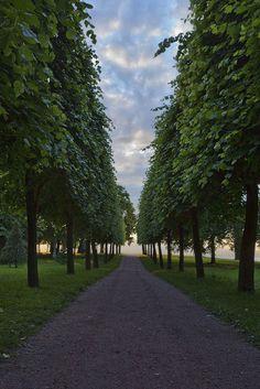 #Peterhof, St  #Petersburg, #Russia