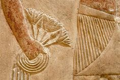 Lotus blossoms, Sakkara, Memphis, Tomb of Kagmeni, 6th Dynasty, 6th Dynasty, Old Kingdom, Egypt.