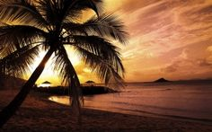 Earth - Tropical Wallpapers and Backgrounds