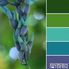Palettes Inspired by Nature Inspired Trends & Color - Color Palettes Inspired by Nature - Inspired Trends & Color - Color Palettes Inspired by Nature - Colour Pallette, Color Palate, Colour Schemes, Color Combos, Color Patterns, Color Palette Green, Color Concept, Palette Design, Design Seeds