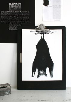 Bat print {BODIE and FOU Exclusive} — BODIE and FOU - Award-winning inspiring concept store