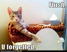 U forgetted..