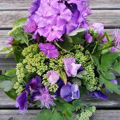#syysleimu # kukkakimppu #lila #maksaruoho #hajuherne