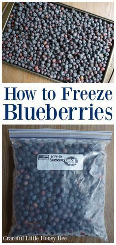 See how quick and easy it is to freeze blueberries for baking and smoothies all year long! Frozen Blueberries, Bee, Blueberry, Honey, Bees, Blueberries