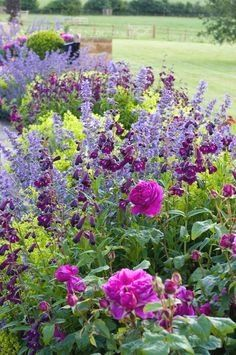 FARMHOUSE GARDEN Location: UK Designer: Nicholsons Garden Design & Landscaping based in Bicester, Oxfordshire. #FarmhouseLandscape  #farmhouselandscaping