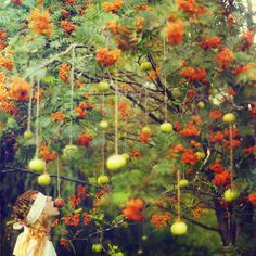 Whimsical World of Laura Bird: Artist Spotlight - Lissy Elle Horticulture, Bobbing For Apples, Apple Bobbing, Apple Tree, Samhain, Photo Manipulation, Photo Art, Art Decor, Whimsical