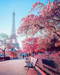 Effiel Tower, Paris, Frankreich - Beril Yıldız Yildiz - # Yıldız - Effiel Tower, Paris, Frankreich - Be - - Beautiful Nature Wallpaper, Beautiful Landscapes, Paris Photography, Nature Photography, Eiffel Tower Photography, Photography Flowers, Travel Photography, Paris Amor, Paris In Spring
