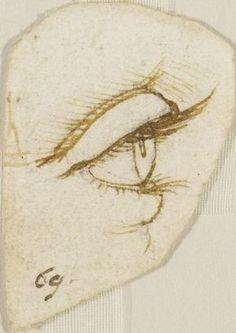 Leonardo da Vinci (Vinci 1452-Amboise 1519) - An eye in profile